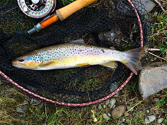 Welsh Dee – Trout Fishing Season Now Open – Hawker-Overend